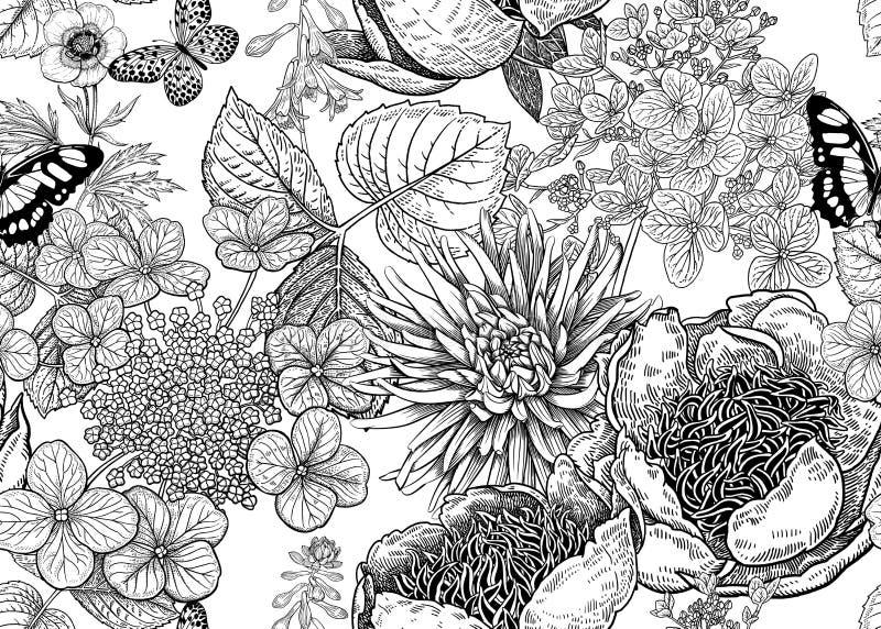Modelo inconsútil del vector floral Peonías, aster y hortensia stock de ilustración