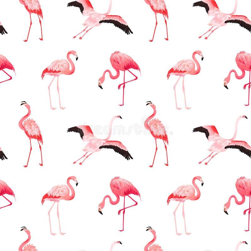 Modelo inconsútil del verano del vector del flamenco tropical Fondo rosado exótico para los papeles pintados, página web, textura ilustración del vector