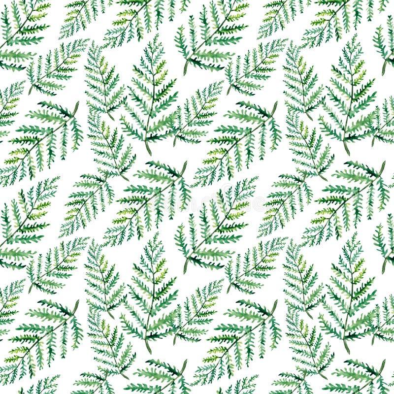 Modelo inconsútil del verdor de la acuarela Fern Leaves y las ramas imprimen ilustración del vector