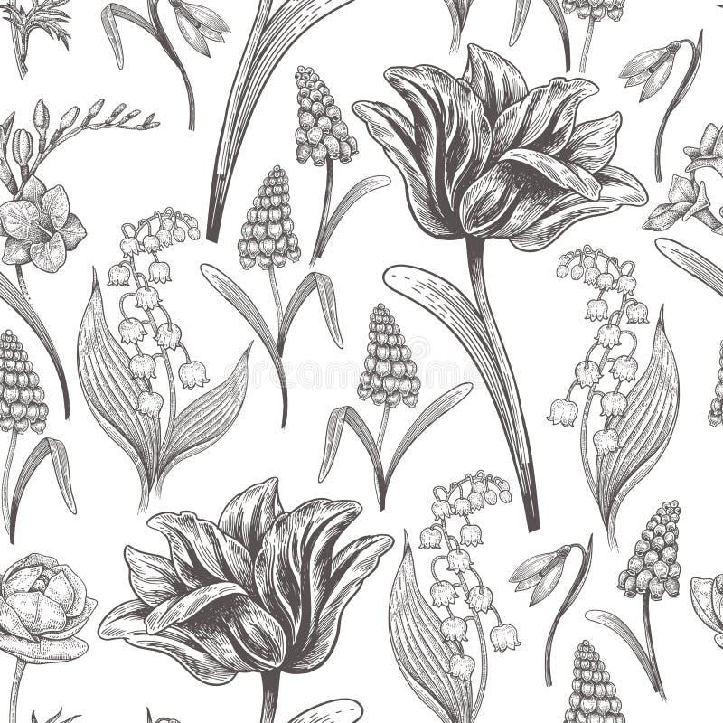 Modelo inconsútil del vintage floral con las flores de la primavera libre illustration