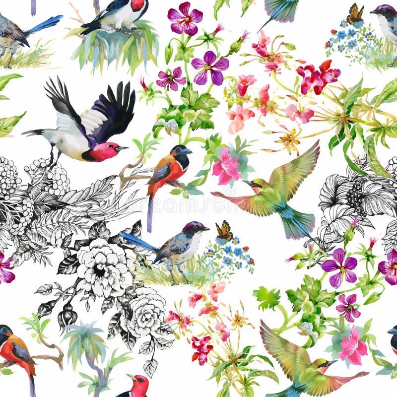 Modelo inconsútil dibujado mano de la acuarela con las flores tropicales del verano y los pájaros exóticos libre illustration