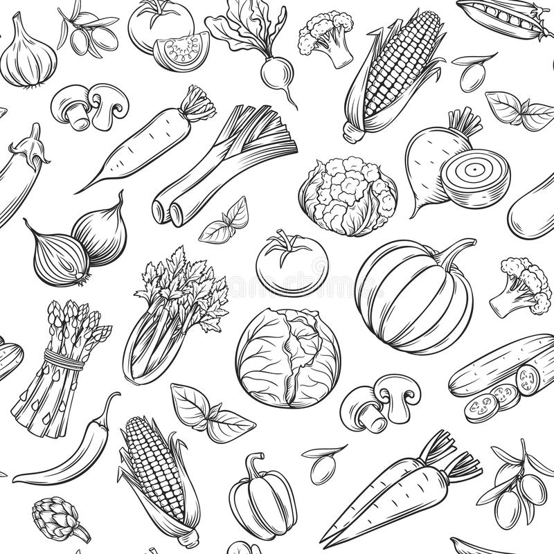 Modelo inconsútil dibujado mano de las verduras ilustración del vector