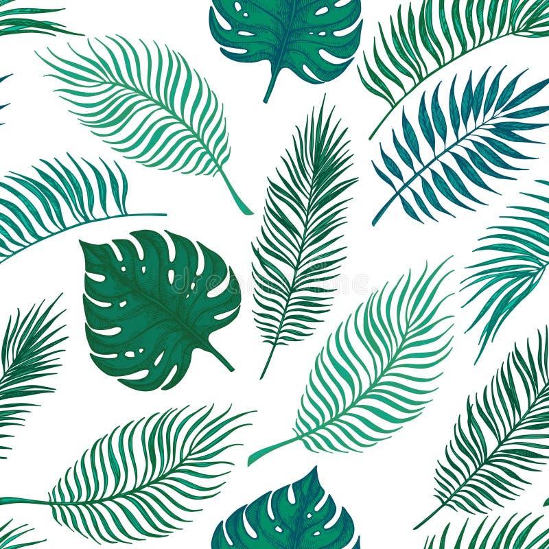 Modelo inconsútil dibujado mano del vector - hojas de palma Desig tropical libre illustration