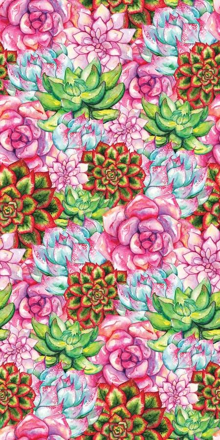 Modelo inconsútil dibujado mano suculenta de la planta de la flor del cactus de la acuarela libre illustration