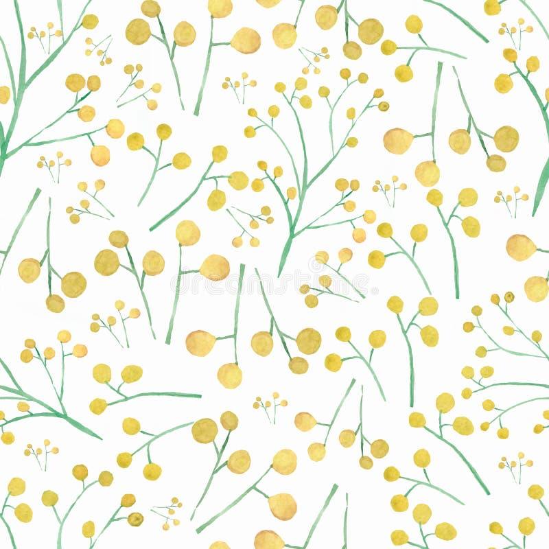 Modelo inconsútil exhausto de la mano de la acuarela con la mimosa amarilla de las flores de la primavera libre illustration