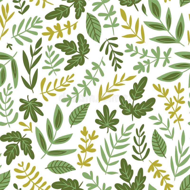 Modelo inconsútil exhausto de la mano - verdes y hojas de la ensalada aislados en el fondo blanco en estilo orgánico de moda Ilus stock de ilustración