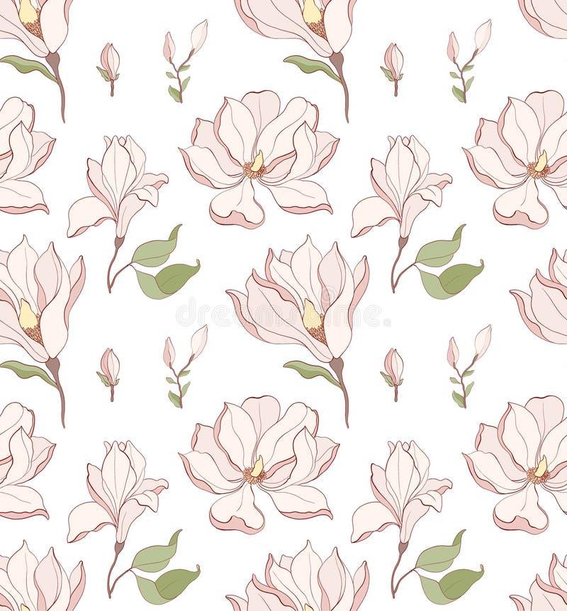 Modelo inconsútil, flor blanco exhausto de la magnolia de la mano ilustración del vector