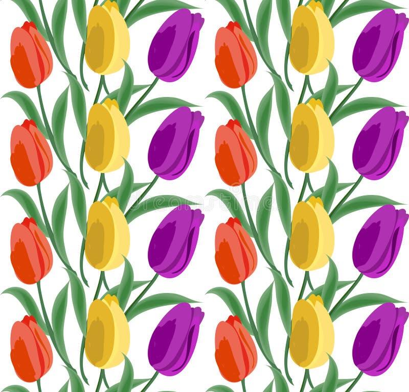 Modelo inconsútil floral del fondo con los tulipanes La primavera florece la mano del ejemplo del vector del flor dibujada ilustración del vector