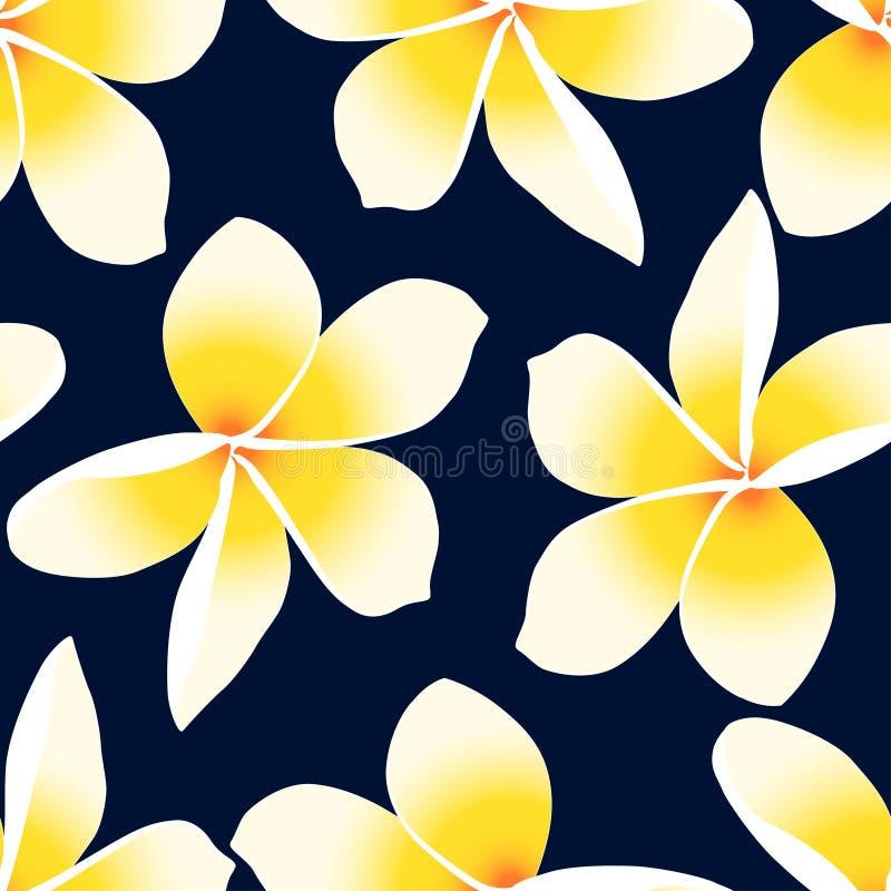 Modelo inconsútil floral del Plumeria tropical amarillo del Frangipani ilustración del vector