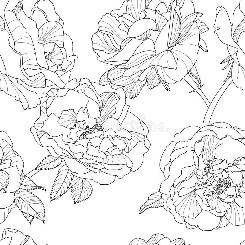 Modelo inconsútil floral del vector Fondo blanco y negro con las flores color de rosa dibujadas mano del esquema libre illustration