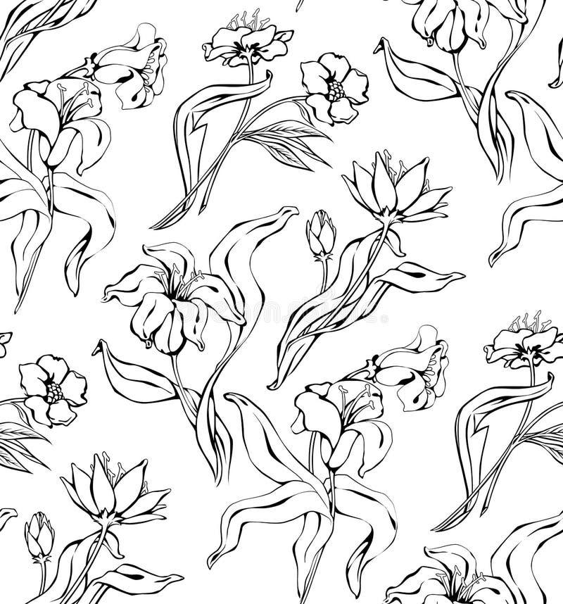 Modelo inconsútil floral del vintage con el lirio dibujado mano libre illustration