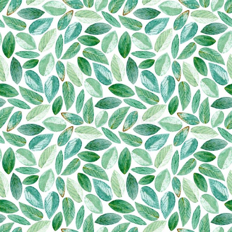 Modelo inconsútil floral Ramas del eucalipto watercolor stock de ilustración