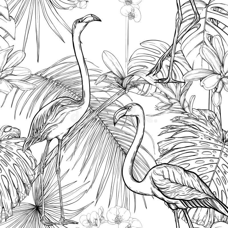 Modelo inconsútil, fondo con las plantas tropicales y las flores con las flores blancas de la orquídea y los pájaros tropicales n stock de ilustración