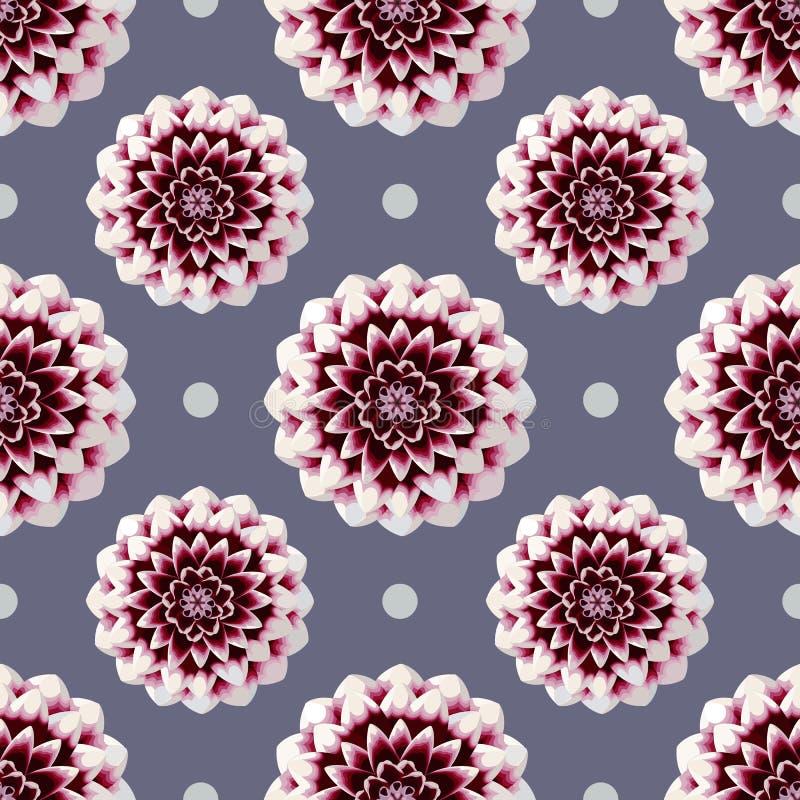 Modelo inconsútil hermoso de la dalia de la flor del flor del punto rojo y blanco del palka en fondo púrpura stock de ilustración