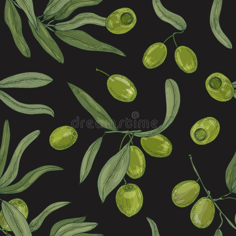 Modelo inconsútil natural con las ramas de olivo, las hojas, las frutas crudas orgánicas verdes o las drupas en el fondo blanco ilustración del vector