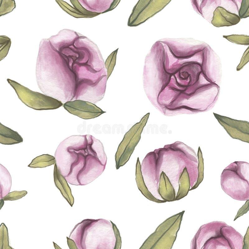 Modelo inconsútil Rose roja Amor delicado Flores exhaustas de la peonía del color de agua de la mano con las hojas ilustración del vector