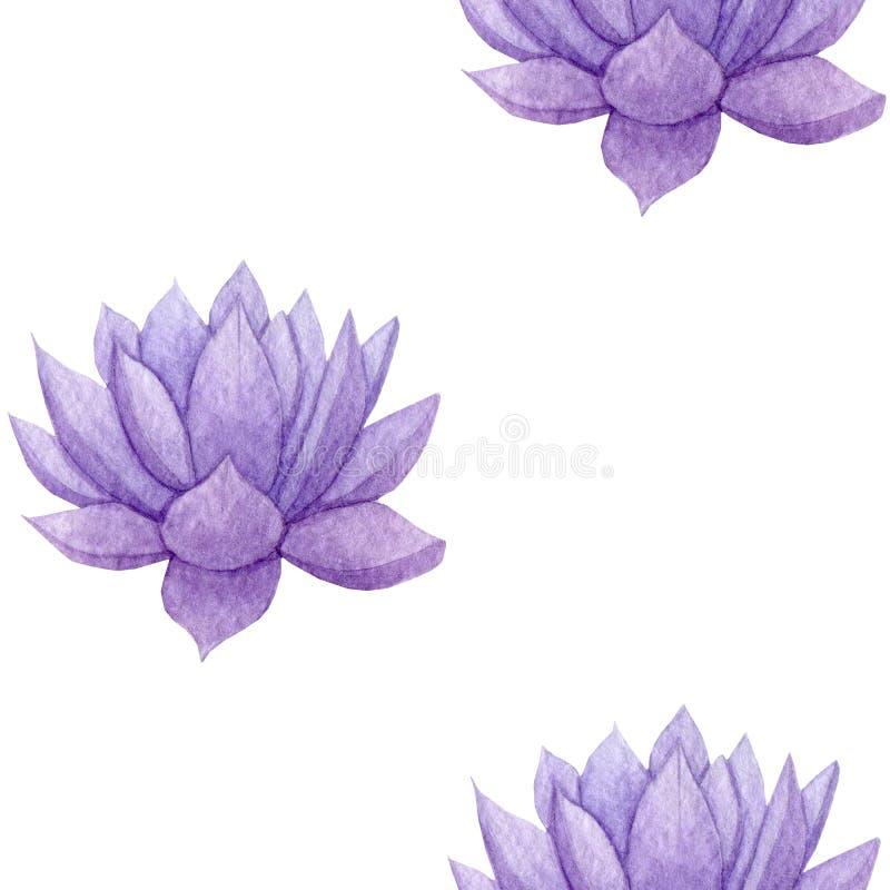 Modelo inconsútil suculento púrpura dibujado mano de la acuarela libre illustration