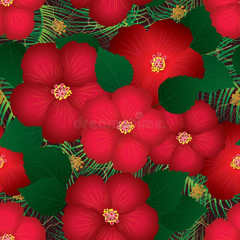 Modelo inconsútil superior rojo del hibisco ilustración del vector