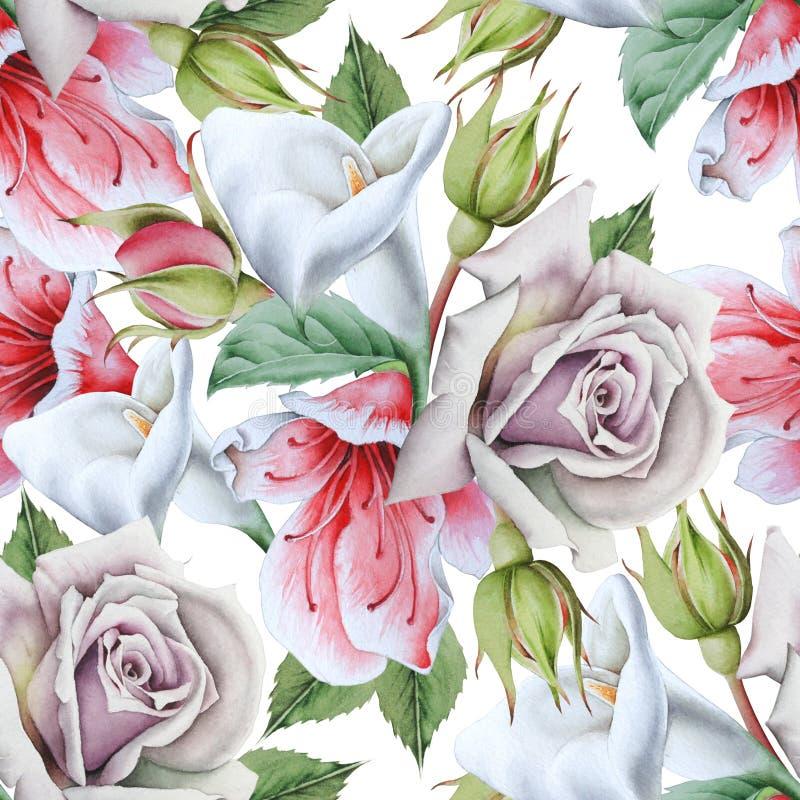 Modelo incons?til brillante con las flores calla Rose Ilustraci?n de la acuarela foto de archivo