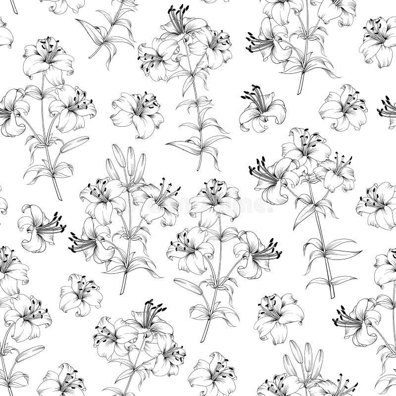 Modelo incons?til de las flores del lirio Fondo floral con los lirios florecientes aislados en el fondo blanco Modelo incons?til ilustración del vector