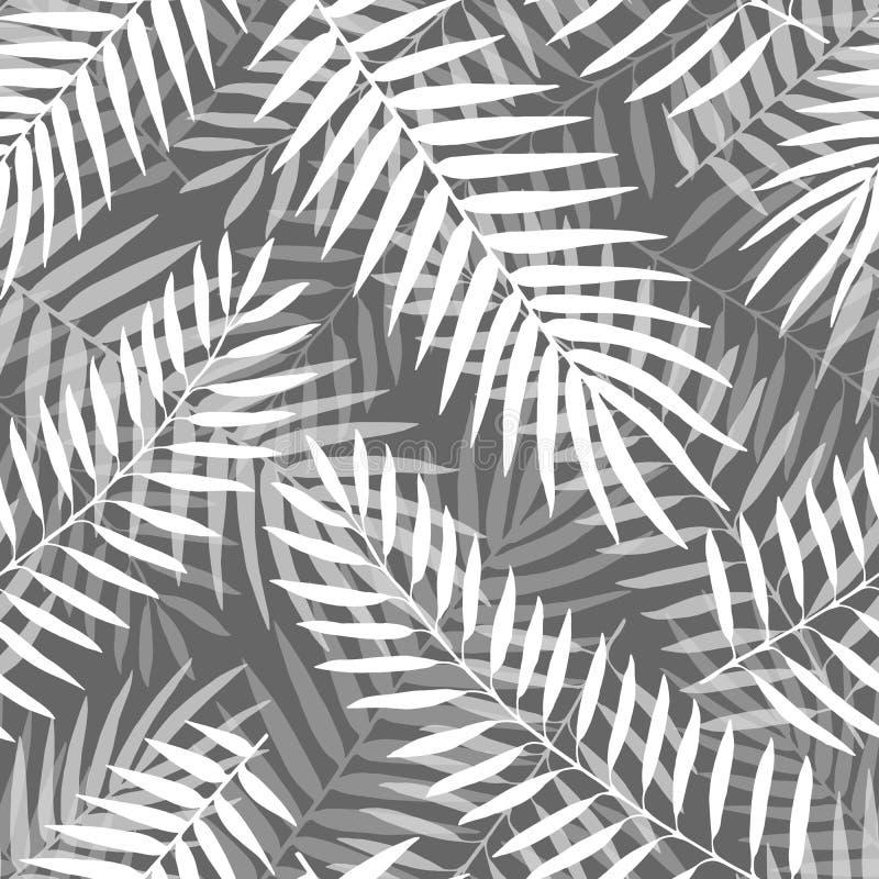 Modelo incons?til de las hojas de palma blancos y negros exhaustas del vector de la mano ilustración del vector