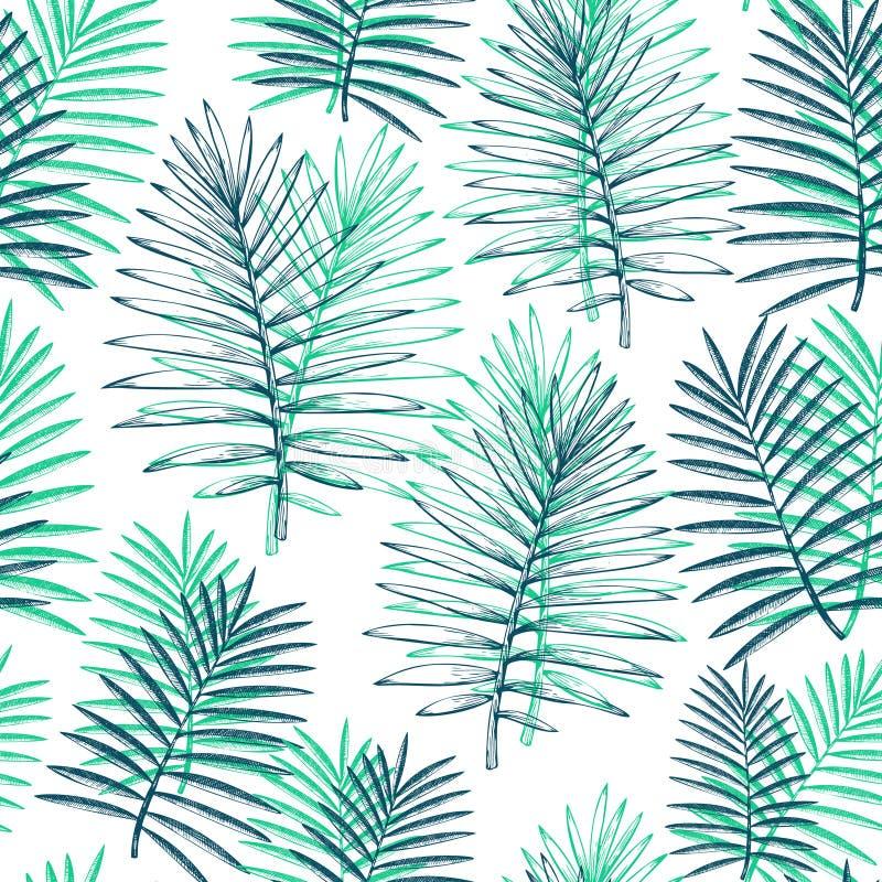 Modelo incons?til de las plantas tropicales Hojas ex?ticas del verano tropical exhausto de la mano Las hojas de la selva, hojas d ilustración del vector