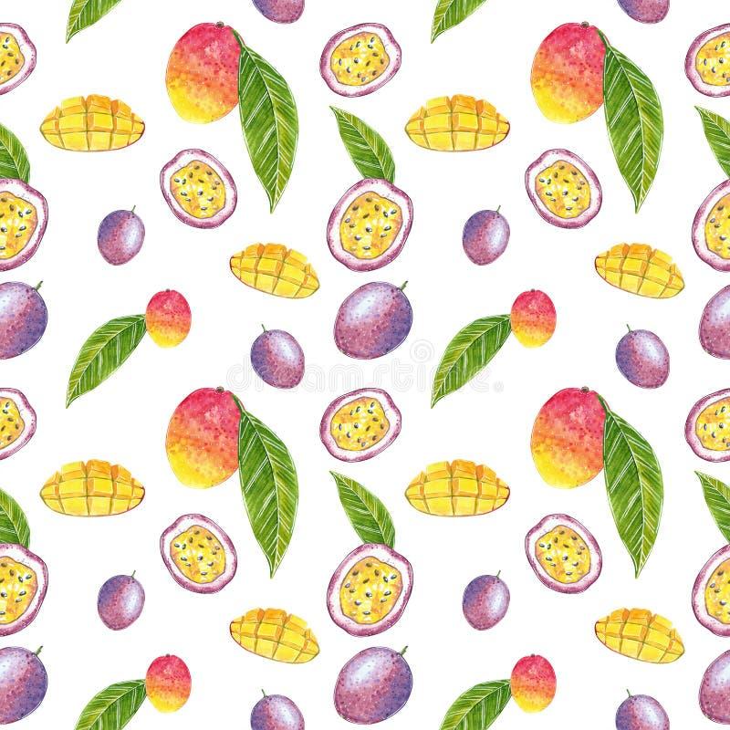 Modelo incons?til del mango y de la fruta de la pasi?n, ejemplo de la acuarela ilustración del vector