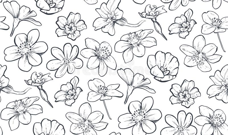 Modelo incons?til del vector con las flores y las hojas exhaustas de la primavera de la mano ilustración del vector