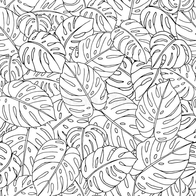 Modelo incons?til del vector de las hojas exhaustas del monstera de la mano en el fondo blanco stock de ilustración