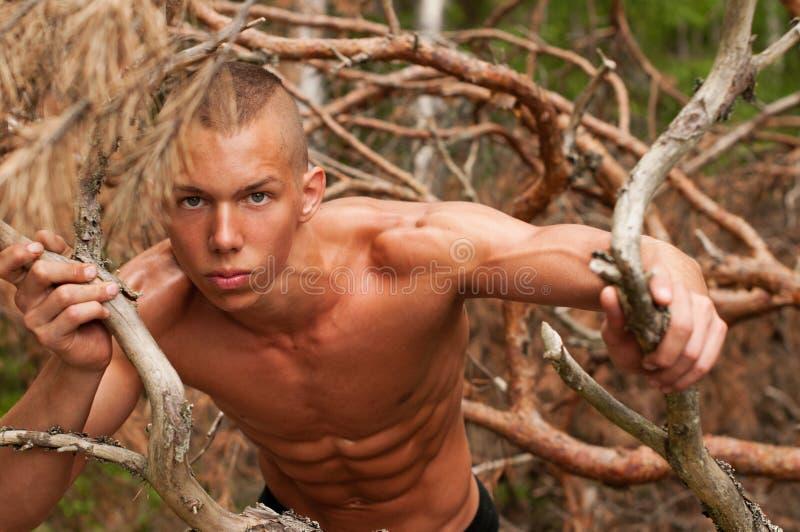 Modelo masculino fotos de stock royalty free