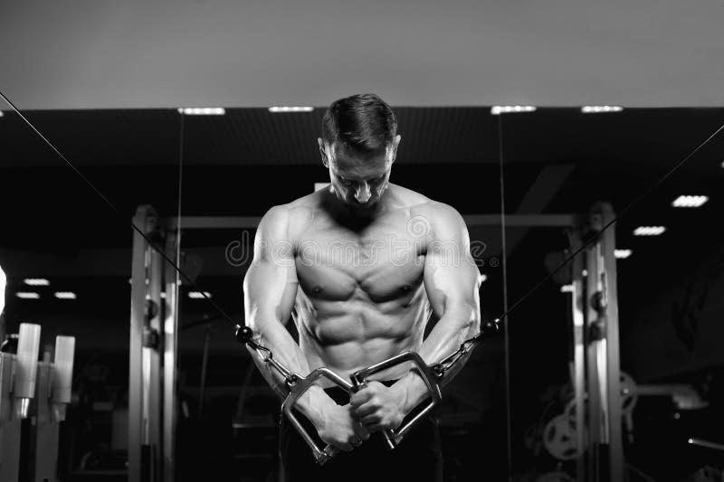 Modelo masculino da aptidão com o torso despido que levanta no gym imagem de stock royalty free