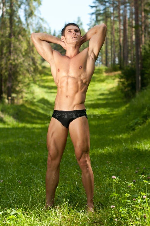 Modelo masculino en el bosque imagen de archivo