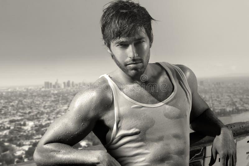 Modelo masculino novo 'sexy' imagem de stock