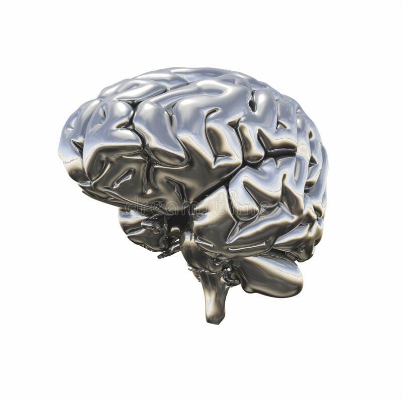 Modelo metálico brillante del cerebro humano ilustración del vector