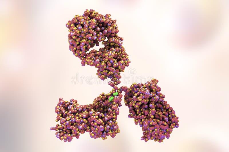 Modelo molecular del anticuerpo stock de ilustración