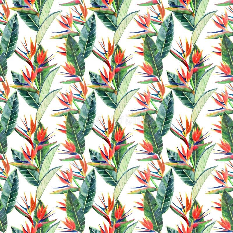 Modelo multicolor lindo precioso tropical herbario floral verde hermoso brillante del verano de Hawaii del flores amarillas tropi ilustración del vector
