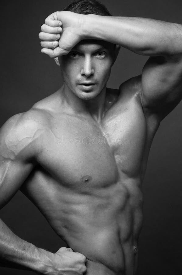 Modelo muscular imagem de stock royalty free