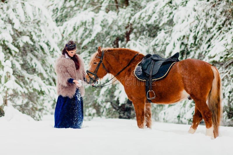 Modelo novo bonito com o cavalo fotografia de stock royalty free