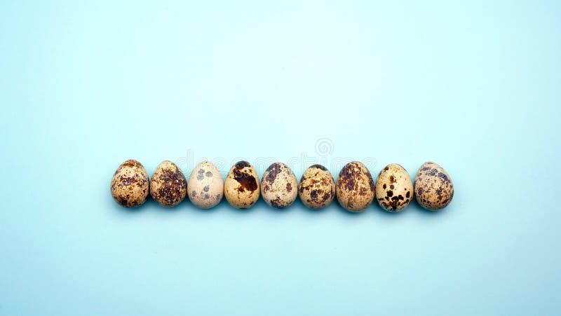 Modelo puesto plano de los huevos de Pascua en fondo en colores pastel Concepto mínimo foto de archivo libre de regalías