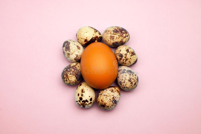 Modelo puesto plano de los huevos de Pascua en fondo en colores pastel Concepto mínimo fotografía de archivo libre de regalías