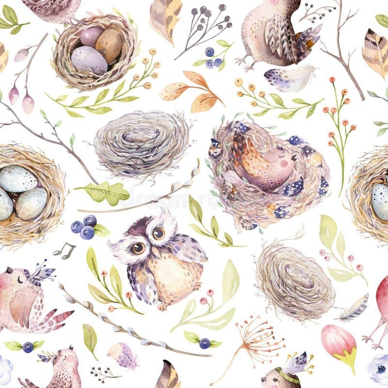 Modelo rústico de la primavera de la acuarela con la jerarquía, los pájaros, la rama, las ramitas del árbol y la pluma Pájaro dib stock de ilustración