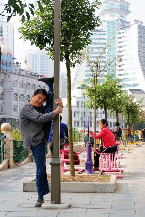 Modelo saudável da vida de Chineses imagens de stock royalty free