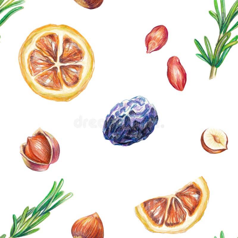 Modelo seco de la fruta stock de ilustración