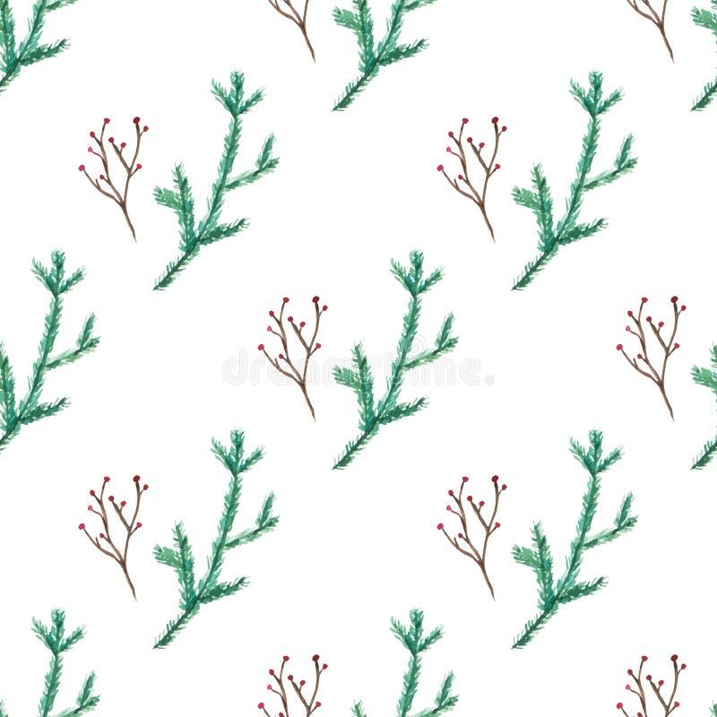 Modelo simple del invierno de la acuarela de las ramas verdes del abeto y de las bayas rojas ilustración del vector