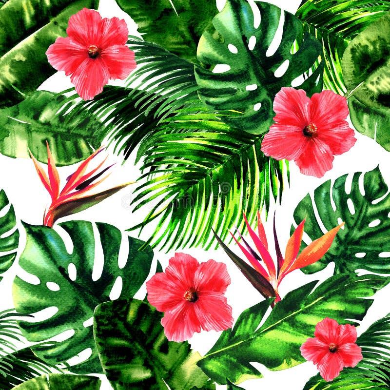 Modelo tropical con la hoja del monstera, hojas de palma, ave del paraíso, flor del hibisco, modelo inconsútil colorido del veran stock de ilustración