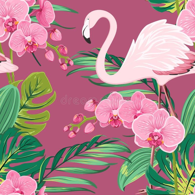 Modelo tropical de las hojas del flamenco de la flor de la orquídea ilustración del vector