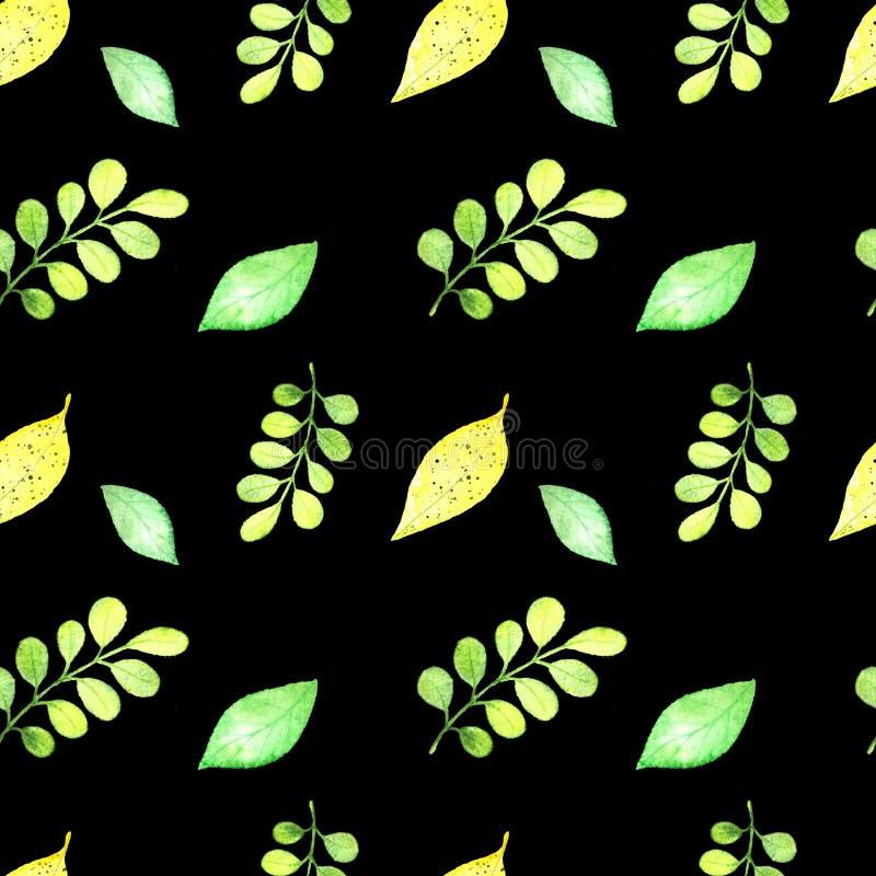 Modelo tropical inconsútil, hojas del frash ilustración del vector