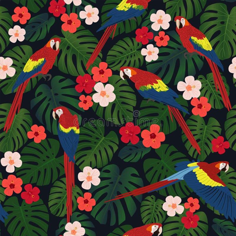 Modelo tropical inconsútil, hojas del monstera, flores color de rosa chinas, loros rojos del ara en un fondo negro libre illustration