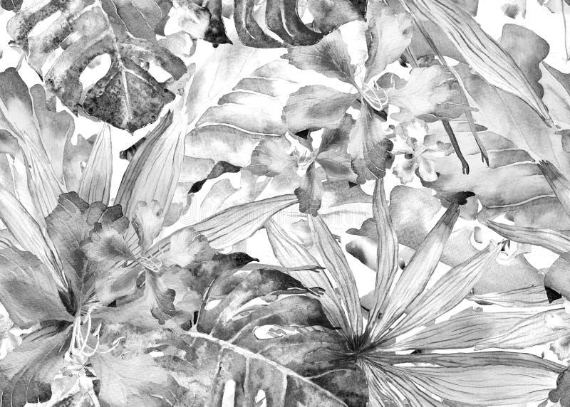 Modelo tropical Palma de Tailandia de la acuarela, monstera, hibisco, árbol de plátano stock de ilustración