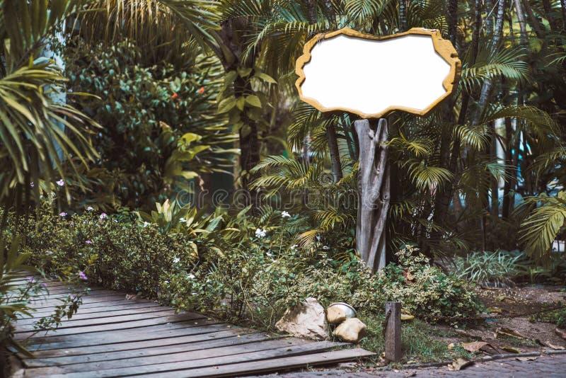 Modelo vazio de madeira do quadro indicador em ajustes tropicais imagem de stock